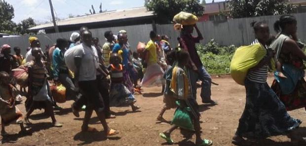 Ethiopian land grab Impact